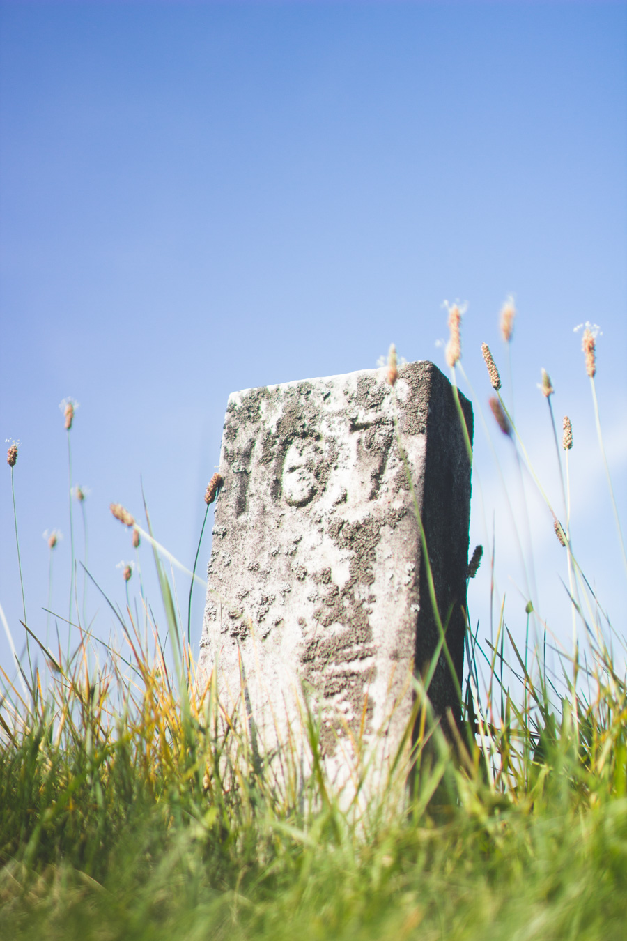 Wayne County Home Cemetery, headstone with just numbers
