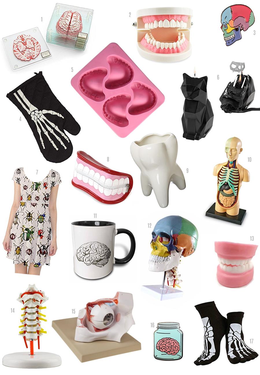 tooth, dental, bones, oddities, gift guide