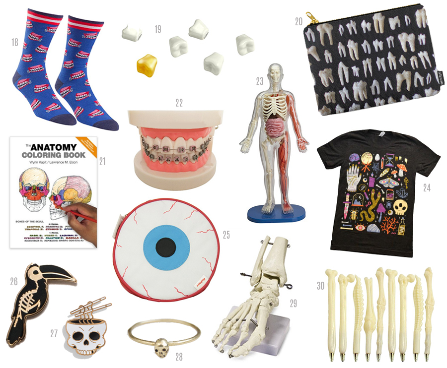 unique gift guide, skeletons, teeth, tooth, oddities