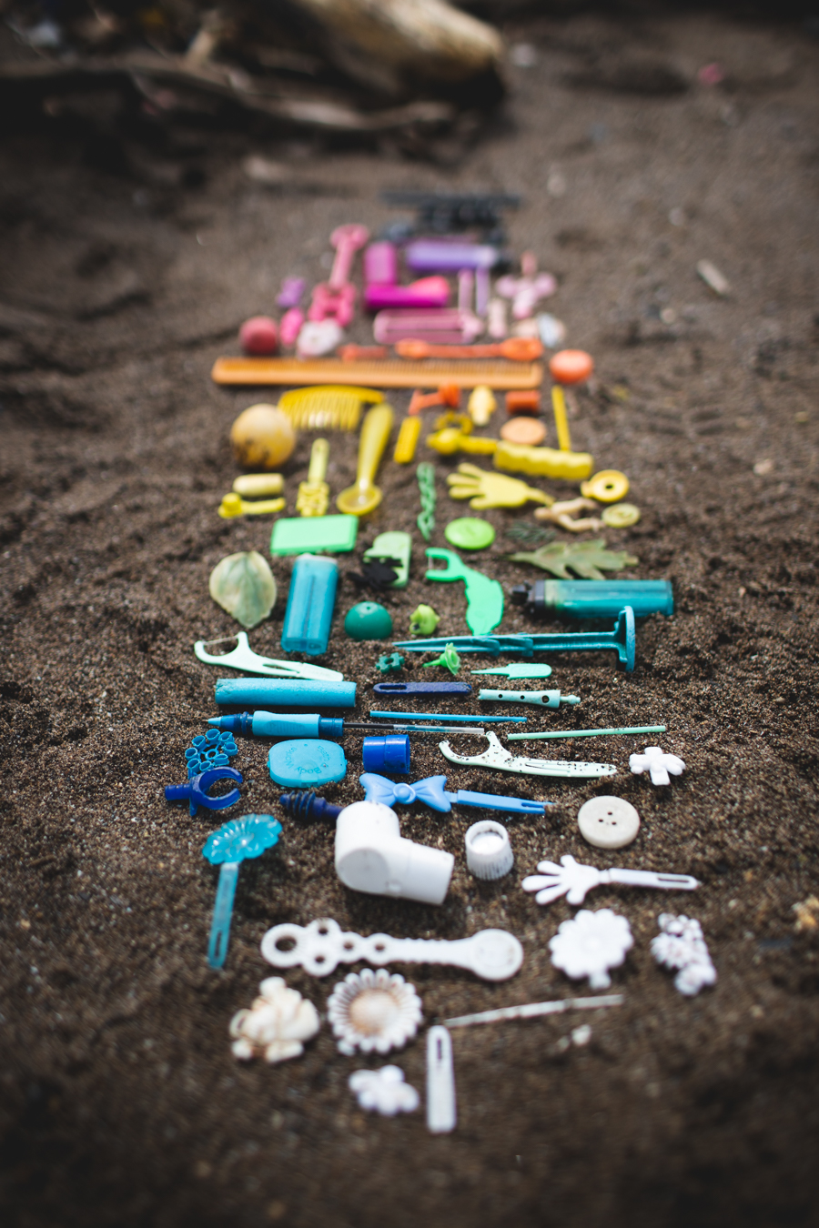 beach plastic, plastic pollution, lake erie, the dainty squid