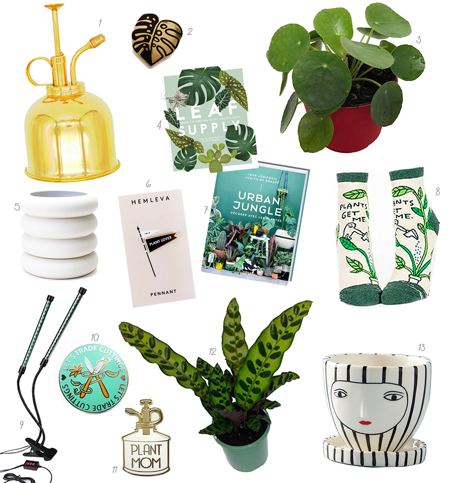 plant lady, plant lover, gift guide