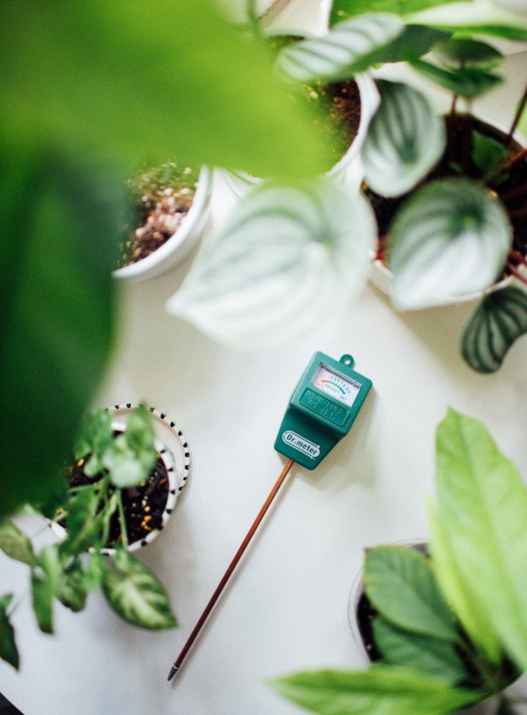 Dr. meter moisture meter review