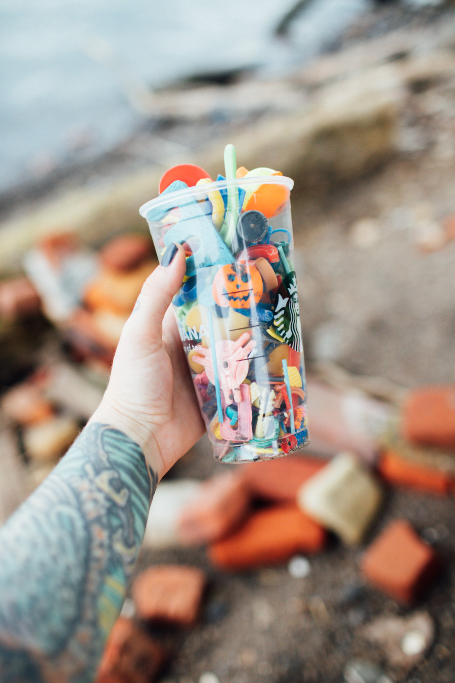 plastic pollution found along the shores of Lake Erie